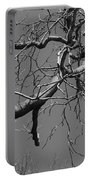 Black And White Tree Branch Portable Battery Charger