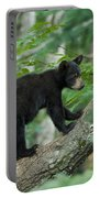 Black Bear Cub Portable Battery Charger