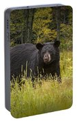Black Bear In The Grass Portable Battery Charger