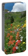 Black Bear Pass Landscape Portable Battery Charger by Cascade Colors