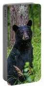 Black Bear Portable Battery Charger
