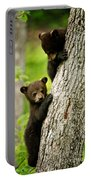 Black Bear Pictures 84 Portable Battery Charger