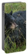 Black Bear Sow Portable Battery Charger