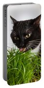 Black Cat Eating Cat Grass Portable Battery Charger