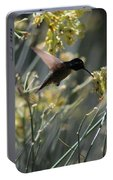 Black Chinned Hummingbird In Flight Portable Battery Charger