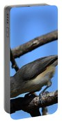 Black Crested Titmouse Portable Battery Charger
