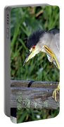Black Crown Night Heron Scratching Portable Battery Charger