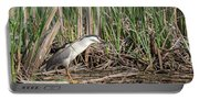 Black-crowned Night Heron 2018-1 Portable Battery Charger