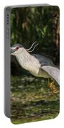 Black-crowned Night Heron In Flight Portable Battery Charger