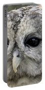 Black Eye Owl Portable Battery Charger