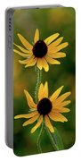 Black Eyed Susans 3276 H_2 Portable Battery Charger