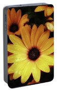 Black Eyed Susans. Looks Like They're Portable Battery Charger