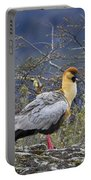 Black-faced Ibis Portable Battery Charger