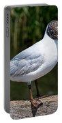 Black-headed Gull - Larus Ridibundus Portable Battery Charger