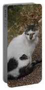 Black Heart Cat Portable Battery Charger