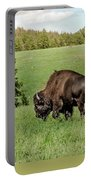 Black Hills Bull Bison Portable Battery Charger