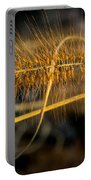 Black Pennisetum In Setting Sun Portable Battery Charger