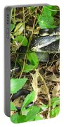 Black Rat Snake Portable Battery Charger