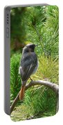 Black Redstart Portable Battery Charger