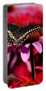 Black Swallowtail Butterfly On Coneflower Square Portable Battery Charger
