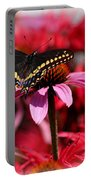 Black Swallowtail Butterfly With Coneflower And Monarda Portable Battery Charger