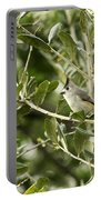Black Titmouse Portable Battery Charger