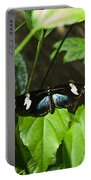 Black Tropical Butterfly Portable Battery Charger