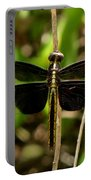 Widow Skimmer Dragonfly Female Portable Battery Charger