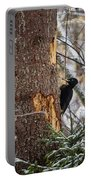 Black Woodpecker Peek Portable Battery Charger