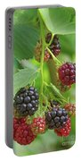 Blackberry Portable Battery Charger