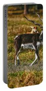 Blackbuck Portable Battery Charger