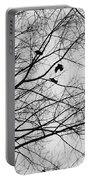 Blackened Birds Portable Battery Charger