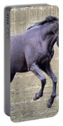 Blackhorse Poetry Portable Battery Charger