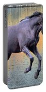 Blacks Danse Portable Battery Charger
