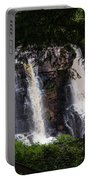 Blackwater Falls #2 Portable Battery Charger
