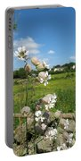 Bladder Campion On Stone Wall Portable Battery Charger