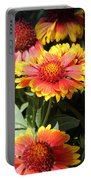 Blanket Flowers Portable Battery Charger
