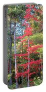 Blazing Red Portable Battery Charger