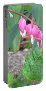 Bleeding Hearts #1 Portable Battery Charger