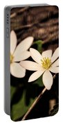 Bloodroot In Spring Portable Battery Charger