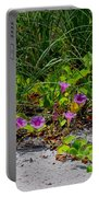 Blooming Cross Vines Along The Beach Portable Battery Charger