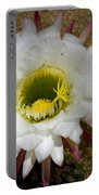 Blooming Hedgehog Cactus Portable Battery Charger