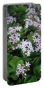 Blooming Money Tree Portable Battery Charger