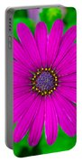 Blooming Purple Portable Battery Charger