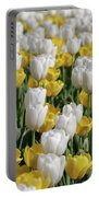 Blooming Tulips As Far As The Eye Can See Portable Battery Charger