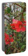 Blooms In The Alley Portable Battery Charger