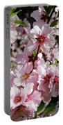 Blossoming Almond Branch Portable Battery Charger