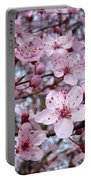 Blossoms Art Prints Nature Pink Tree Blossoms Baslee Troutman Portable Battery Charger