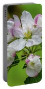 Blossoms In The Rain Portable Battery Charger
