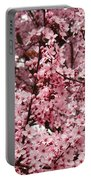 Blossoms Pink Tree Blossoms Giclee Prints Baslee Troutman Portable Battery Charger